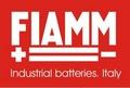 Аккумуляторные батареи FIAMM (45)